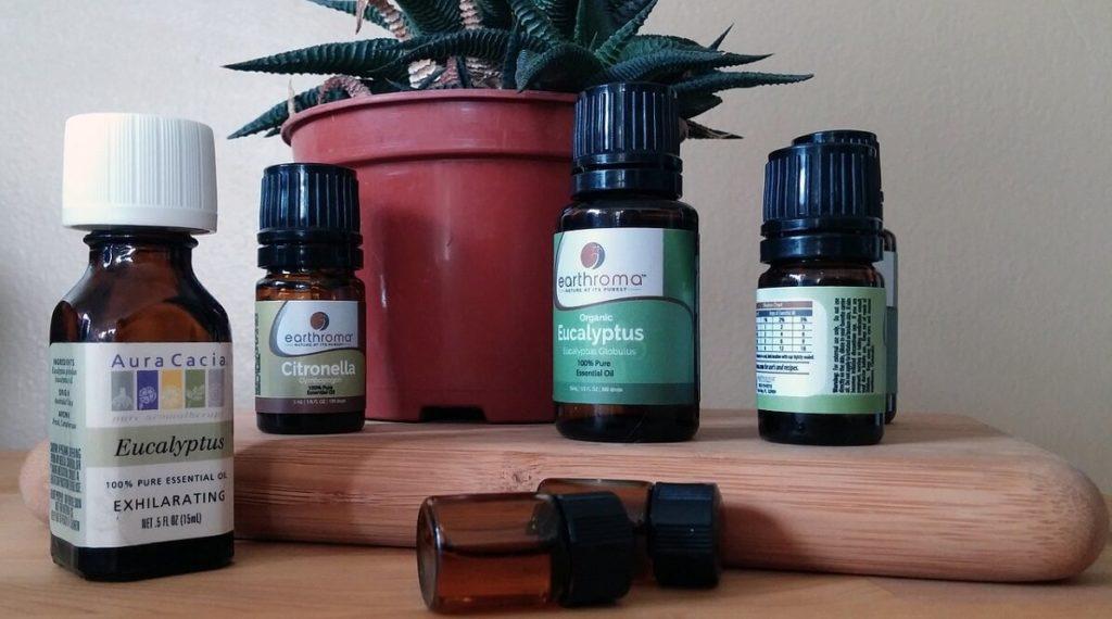 Ätherische Öle gegen Mücken