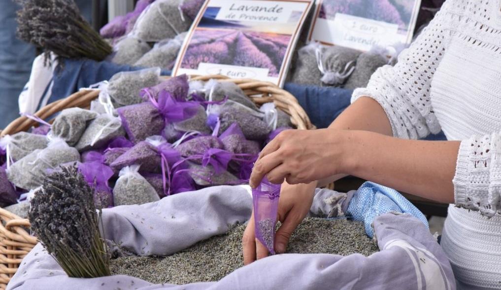 Lavendel gegen Mücken