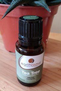 Teebaumöl gegen Mücken
