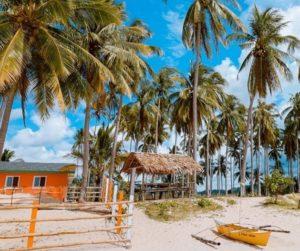 Mückenschutz in den Tropen